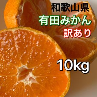 有田みかん 和歌山県産 早生みかん 訳あり 10キロ サイズ混合