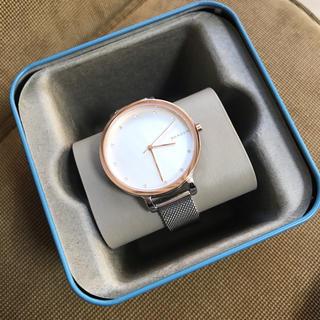 SKAGEN - スカーゲン 新品 腕時計