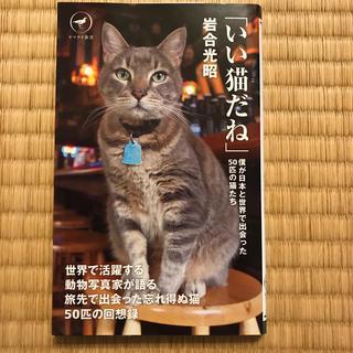 いい猫だね 僕が日本と世界で出会った50匹の猫たち(アート/エンタメ)