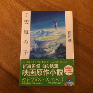 小説天気の子(文学/小説)