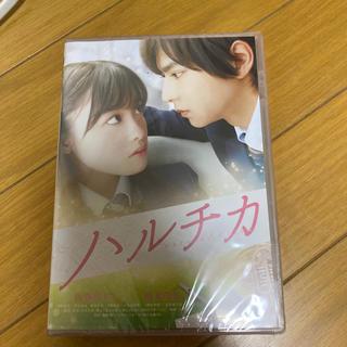 セクシー ゾーン(Sexy Zone)のハルチカ 通常版 DVD(日本映画)