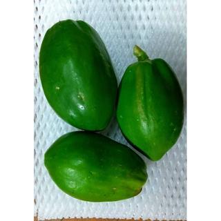 アンチエイジングに! 超健康美容食材 グリーンパパイヤ 3㎏(野菜)