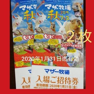 【ペア】マザー牧場 招待券2枚 (2020年1月31日迄有効)(遊園地/テーマパーク)