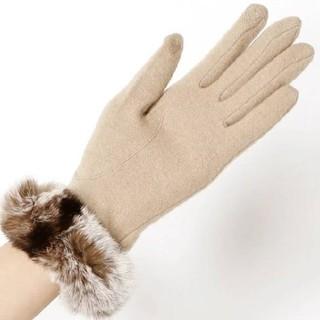 フルラ(Furla)のFURLA手袋(手袋)