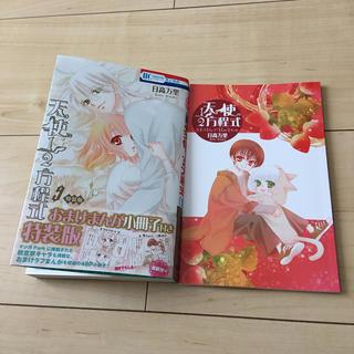 ハクセンシャ(白泉社)の天使1/2方程式 9巻 特装版 小冊子付き 日高万里(少女漫画)