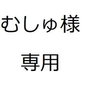 ポケモン(ポケモン)のむしゅ様専用(その他)