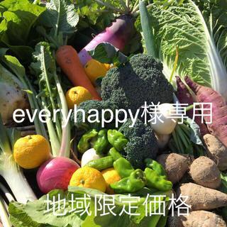 野菜BOX Mサイズ everyhappy様専用(野菜)
