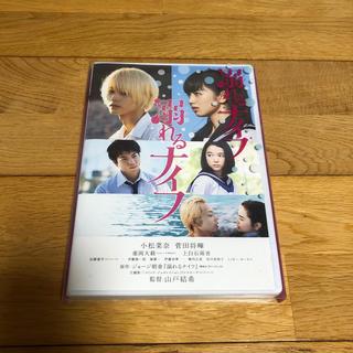 溺れるナイフ DVDコレクターズ・エディション DVD(日本映画)