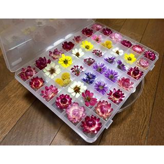300円のお値引き‼️お花屋さんが作ったドライフラワー特大Box   ら2(ドライフラワー)