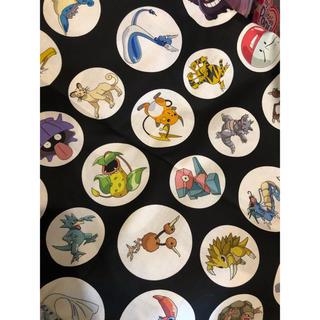 ポケモン(ポケモン)のアメリカで購入ポケモンの生地レア ピカチュウ 日本未発売ポケモンGO(生地/糸)