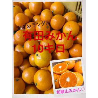 和歌山 有田みかん早生大きめ混合10キロ(フルーツ)