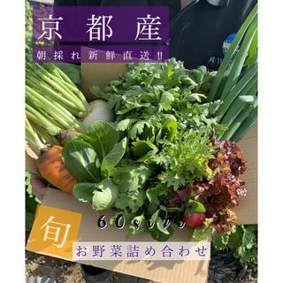 野菜詰め合わせ!!京都無農薬野菜!!旬をお届けします!(野菜)