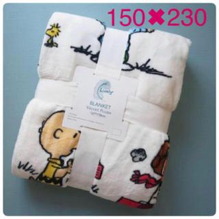スヌーピー(SNOOPY)のダブルサイズ スヌーピー ブランケット 毛布 (毛布)