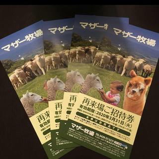 マザー牧場入場券4枚セット(動物園)