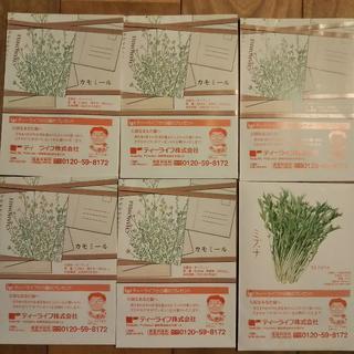 花・野菜の種6袋セット