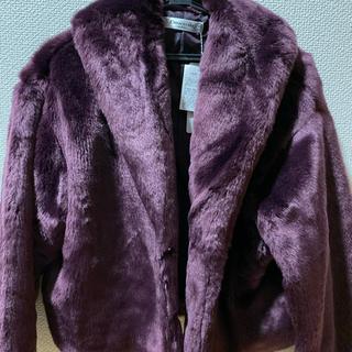 エムズエキサイト(EMSEXCITE)のEmsexcite デカ衿ファージャケット(毛皮/ファーコート)