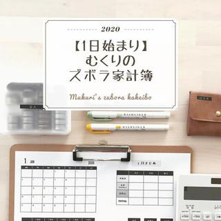 【通常版】むくりのズボラ家計簿2020(その他)