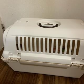 Richell - リッチェル キャンピングキャリー Mサイズ 小型犬