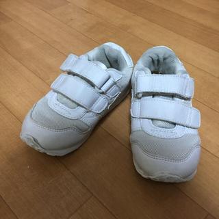 ミズノ(MIZUNO)の靴 15cm バディスポーツ(スニーカー)
