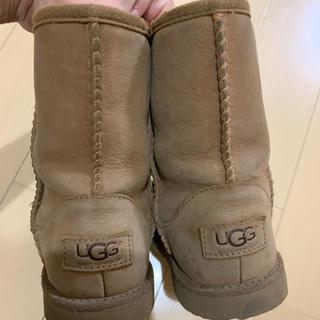 アグ(UGG)の専用になります。購入しないで下さい(ブーツ)