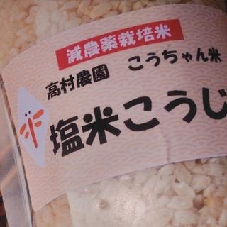 塩米こうじ 2パックセット(その他)