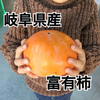 岐阜県産 富有柿 一段 産地直送(フルーツ)