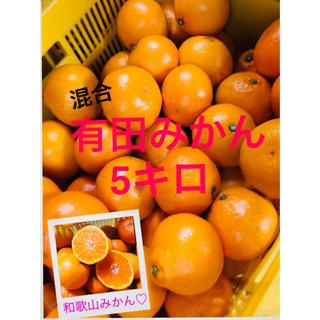 和歌山 有田みかん早生混合5キロ(フルーツ)