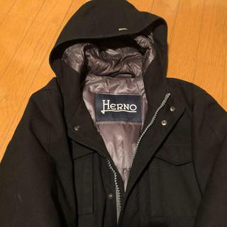ヘルノ(HERNO)の週末限定ヘルノ メンズダウン(ダウンジャケット)