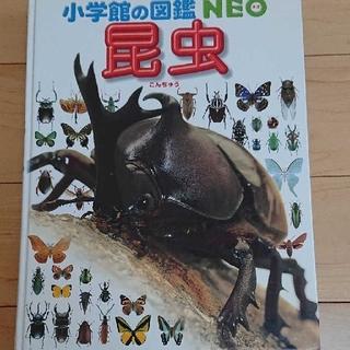 小学館 - 小学舘の図鑑 昆虫
