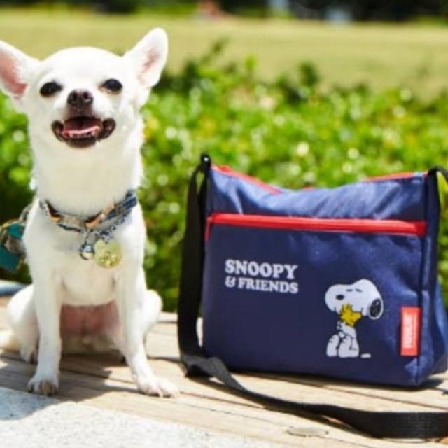 SNOOPY(スヌーピー)のNEO様専用 いぬのきもち付録 スヌーピーお散歩ショルダーバッグ その他のペット用品(犬)の商品写真