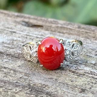 血赤珊瑚 ダイヤモンド リング  Pt900 縦9.9mm×横8.2mm(リング(指輪))