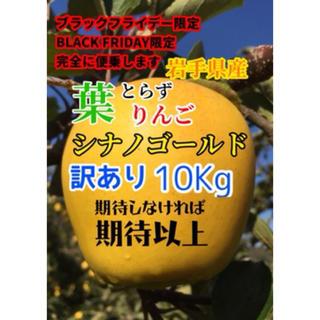 【送料込】訳あり葉とらずりんご シナノゴールド 約10kg 36〜39個入り(フルーツ)