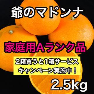 爺のマドンナ 家庭用Aランク品 2.5kg(フルーツ)