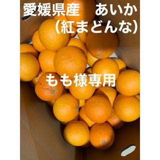 愛媛県産 あいか(紅まどんな)(フルーツ)