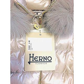 ヘルノ(HERNO)のHERNO 2019 新品タグ付きダウン(ダウンコート)