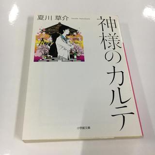 神様のカルテ(文学/小説)