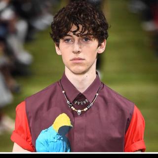 ディオール(Dior)のasap rocky 着用 dior スカルネックレス(ネックレス)