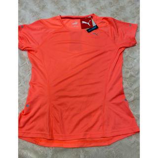 プーマ(PUMA)のプーマ PUMA レディースTシャツ M 新品未使用(Tシャツ(半袖/袖なし))