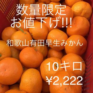 数量限定★値下げ!!! 和歌山有田みかん 10キロ 訳あり(フルーツ)