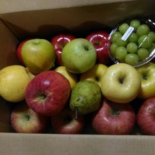 規格外ですが、全部綺麗 りんご 詰め合わせ セット 箱込み7.5kg(フルーツ)