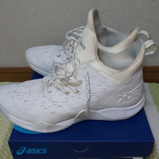 asics - asics ブレーズノヴァ バスケットボールシューズ25.5cm