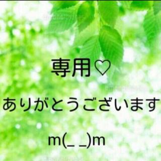 maaa様 専用(その他)