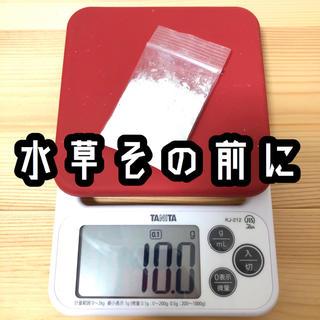 水草その前に 10g (20L分)(アクアリウム)