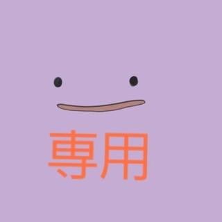 ポケモン(ポケモン)の専用(その他)