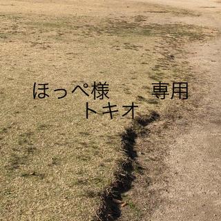 トキオ(TOKIO)のトキオ インカラミトリートメント4 (3本セット)(トリートメント)