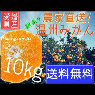 くみっきー様専用 小玉10キロ×2つ(フルーツ)