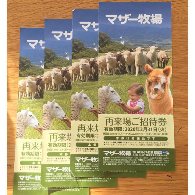 マザー牧場 入場券4枚セット チケットの施設利用券(遊園地/テーマパーク)の商品写真