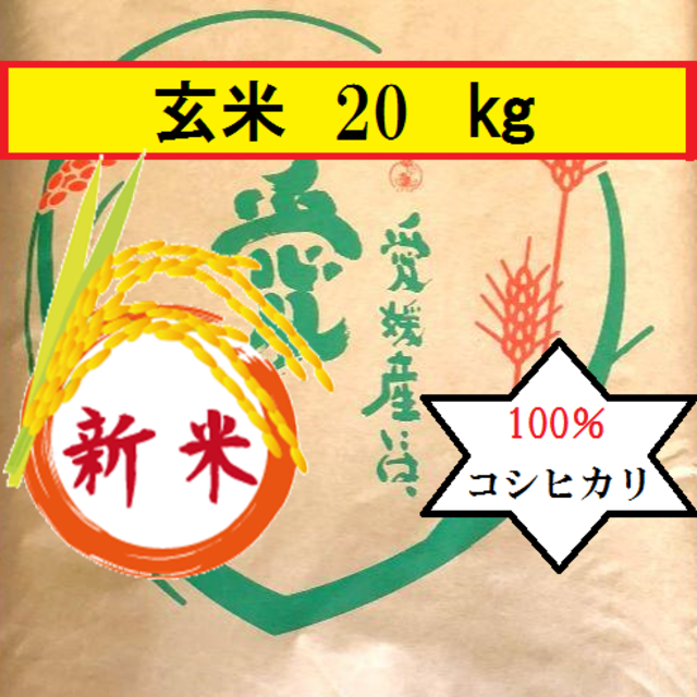 お米 令和元年 愛媛県産コシヒカリ 玄米 20㎏ 食品/飲料/酒の食品(米/穀物)の商品写真