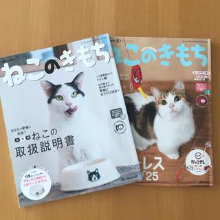 【Benesse】ねこのきもち 2冊セット(猫)