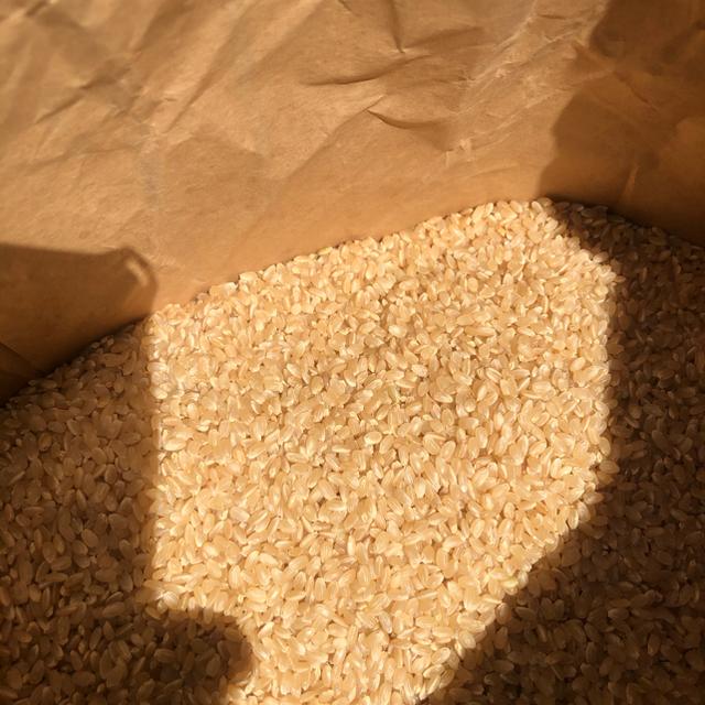 平成30年産茨城県産コシヒカリ 玄米25kg 食品/飲料/酒の食品(米/穀物)の商品写真